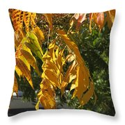 Colors Of The Neighborhood 14 Throw Pillow