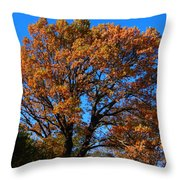 Colours At The Front Throw Pillow