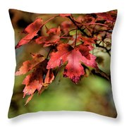 Colours Turning Throw Pillow