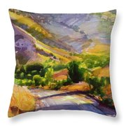 Columbia County Backroads Throw Pillow