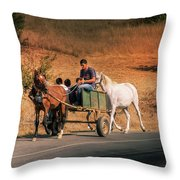 Come Back Home Before Dusk Throw Pillow