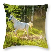 Coming Through The Dust Throw Pillow