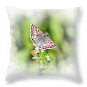 Common Checkered Skipper Butterfly  Throw Pillow