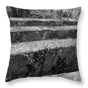 Concrete Forest Throw Pillow