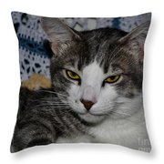 Content Cat Throw Pillow