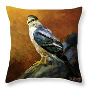 Cooper's Hawk Throw Pillow by Lois Bryan
