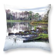 Coosaw - Early Morning Rice Field Throw Pillow