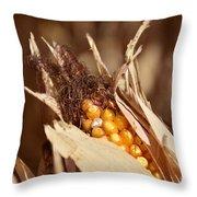 Corn In Dry Husk Throw Pillow
