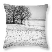 Corn Snow Throw Pillow by Kendall McKernon