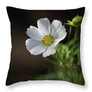 Cosmos In The Cottage Garden Throw Pillow