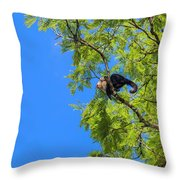 Costa Rica Capuchin Momma And Baby Aboard Throw Pillow