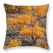 Cottonwoods In Autumn Throw Pillow by Dustin LeFevre