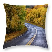 Country Travels Throw Pillow by John De Bord