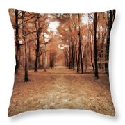 Covered Path Throw Pillow