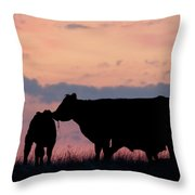 Cow And Calves After Sunset 01 Throw Pillow by Rob Graham