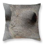 Creatures Of Sand Throw Pillow