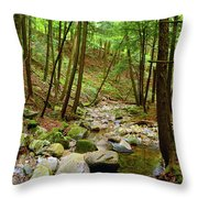 Creek In Massachusetts 2 Throw Pillow