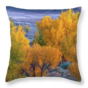 Crescendo Throw Pillow by Dustin LeFevre