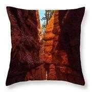 Crimson Crevice Throw Pillow