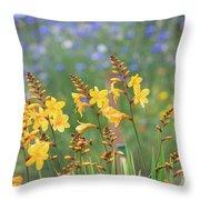 Crocosmia Buttercup Flowers Throw Pillow