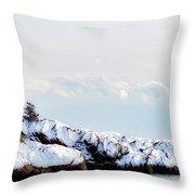 Crow Island, Winter Light Throw Pillow by Michael Hubley