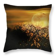 Crows Nest Full Moon Throw Pillow