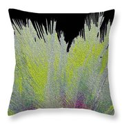 Crystalized Cacti Spears 2c Throw Pillow