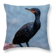 Curious Cormorant Throw Pillow
