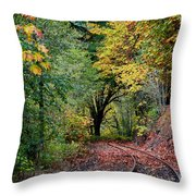 Curved Tracks Throw Pillow