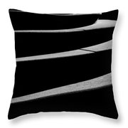Curves Of Light And Shadow Throw Pillow