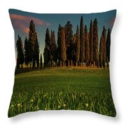 Cypress Circle Throw Pillow by Chris Lord