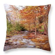 Cypress Creek As It Exits Blue Hole Regional Park In Wimberley, Hays County Texas Hill Country Throw Pillow