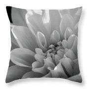 Dahlia In Monochrome Throw Pillow