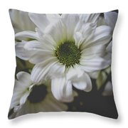 Daisey Flowers 0981 Throw Pillow