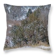 Dakota West In Winter Throw Pillow