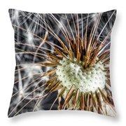 Dandelion Seed Pod Throw Pillow
