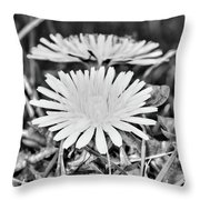 Dandelion Up Close And Personal Black And White Throw Pillow