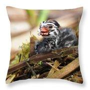 Dapper Dive-dapper Throw Pillow