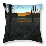 Day Of Eternity Throw Pillow