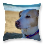 Daydreaming Dog On The Beach Throw Pillow by Lora J Wilson