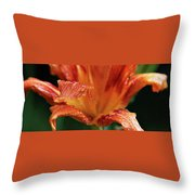 Daylily Dewdrops Throw Pillow