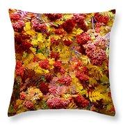 Days Of Autumn 18 Throw Pillow