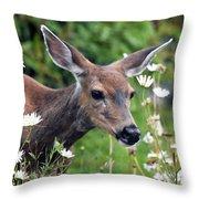 Deer In Daisies Throw Pillow