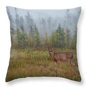 Deer Mist Fog Landscape Throw Pillow by Patti Deters