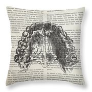 Dentistry Gift Idea Illustration 01 Throw Pillow