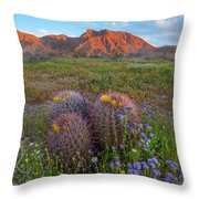 Desert Bluebell In Spring With Barrel Throw Pillow