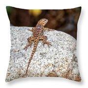 Desert Spiny Lizard H1809 Throw Pillow by Mark Myhaver