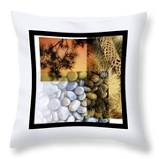 Desert Suite No 1 Throw Pillow by Mark Shoolery