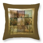 Desert Suite No 4 Throw Pillow by Mark Shoolery