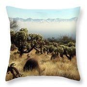 Desert Winter 1 Throw Pillow